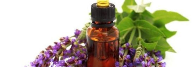 Four Tests for Essential Oil Quality